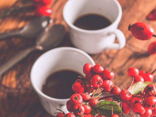 Un'intervista e un caffè con Raggi di legno